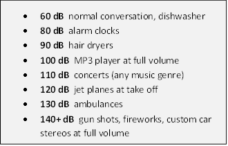 Fireworks And Noise ExposureGreat Lakes Audiology